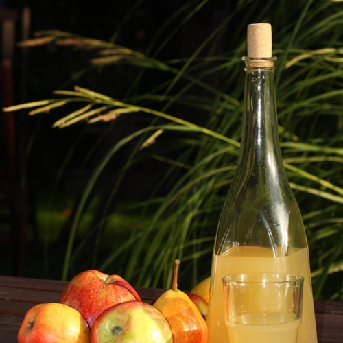 Sip-in-seasonal-style-with-autumnal-cocktails_16001435_800853553_1_14071599_500.jpg