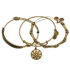 alex + ani star of venus bangle set