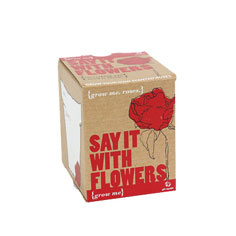 grow me: say it with flowers rose kit