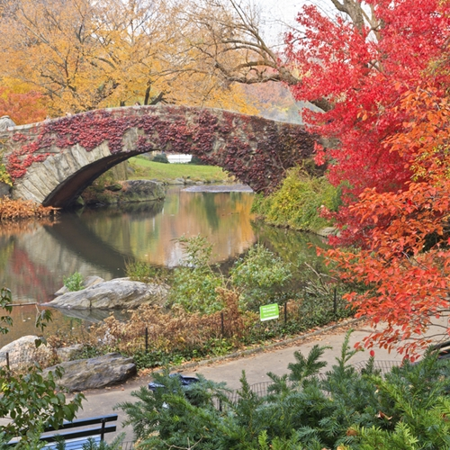 Park it in the park for the best fall wo...