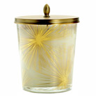 illume gilded amberleaf large harlow jar
